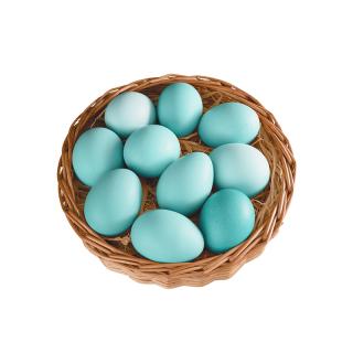 五黑鸡绿壳鸡蛋  10个装